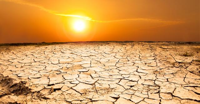 Don't Let Searing Sun Bake Vehicle Surfaces
